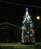 Справжня окраса різдвяних свят - центральна Ворзельська новорічна ялинка